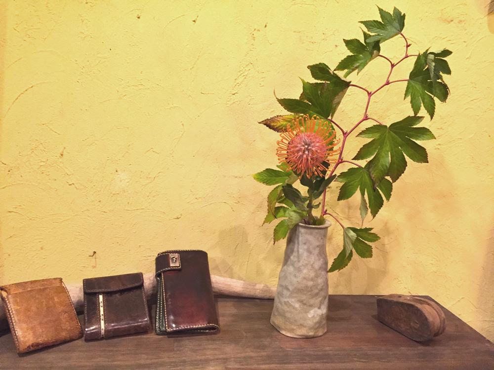 木苺 ピンクッション